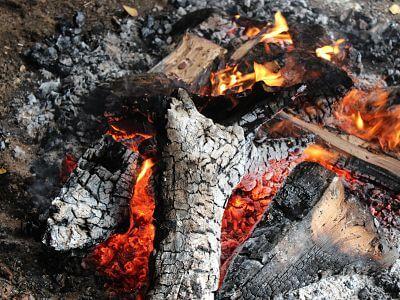 L'énergie biomasse, ses avantages et ses implications en France